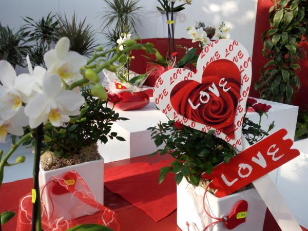 Idee regalo floreali per ogni occasione