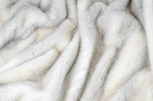 pellicce