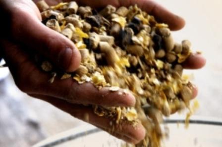 vendita di mangimi di altissima qualità nella zona di Ragusa