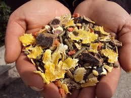alta qualità dei mangimi Baglieri per avicoli polli pulcini