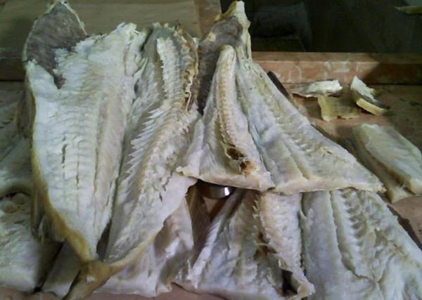 Pesce Stoccafisso Gioacchini dal 1900 a Ancona