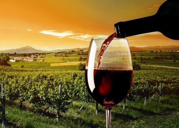 Vino Rosso Vinai Pinat a Ruda Udine
