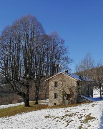 VENDITA - Leffe Monte Croce - Cascina e Terreno