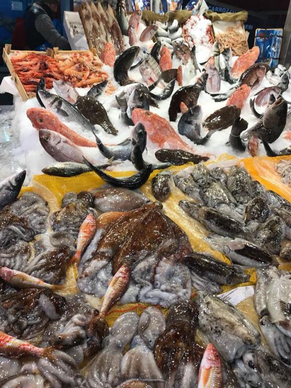 Seppie, polpi, calamari dei nostri mari! Pescheria Pisano Palermo