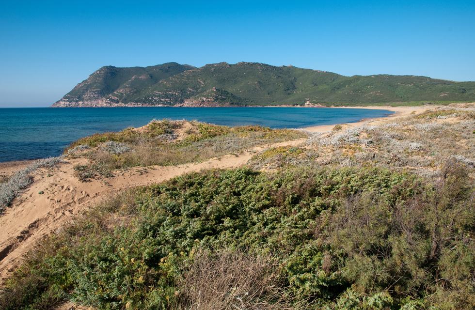Escursioni Smart Sardinia a Olbia Sassari