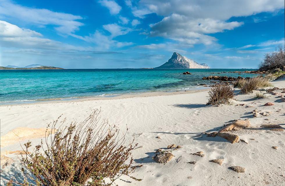 Tour Smart Sardinia a Olbia Sassari