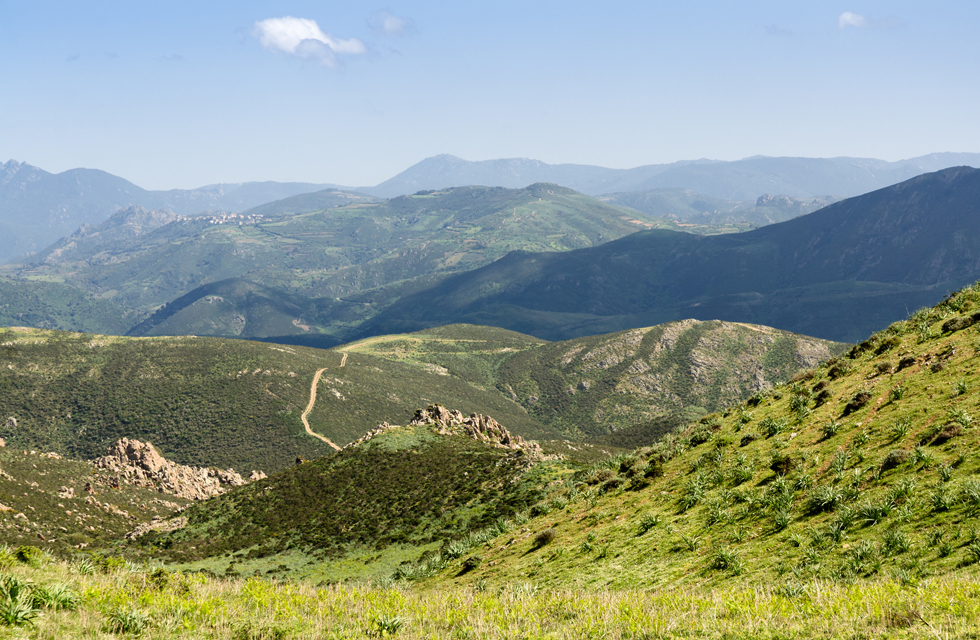 Viaggi Smart Sardinia a Olbia Sassari