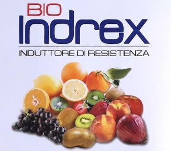 BIO - Indrex