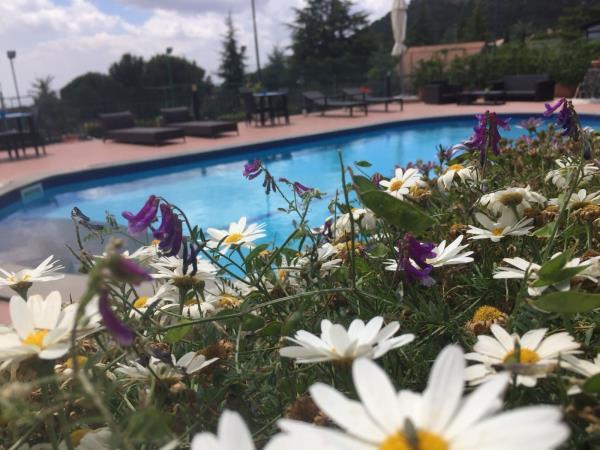 vista sulla piscina