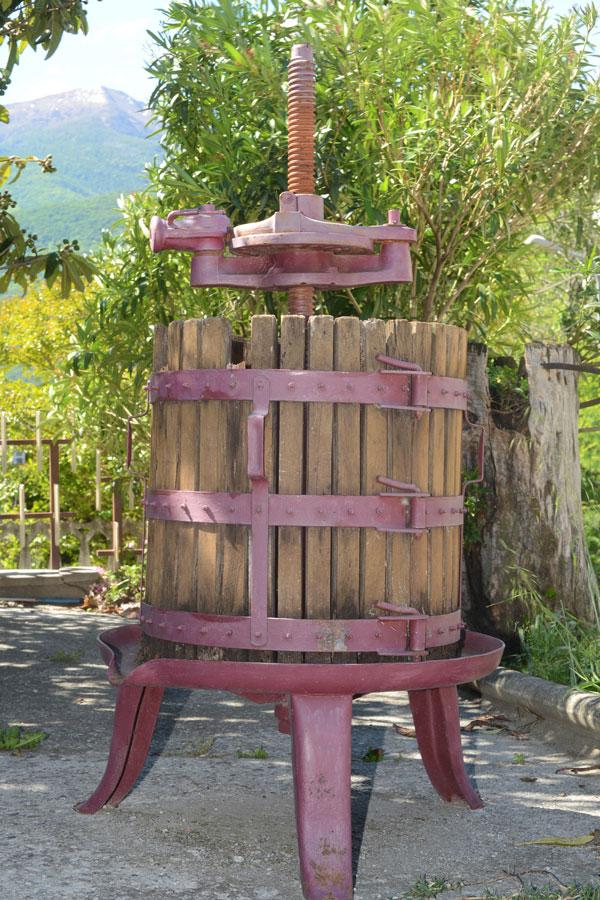 Antica trattoria La Stellina