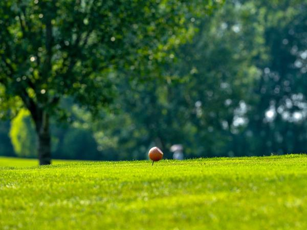 Campi pratica golf