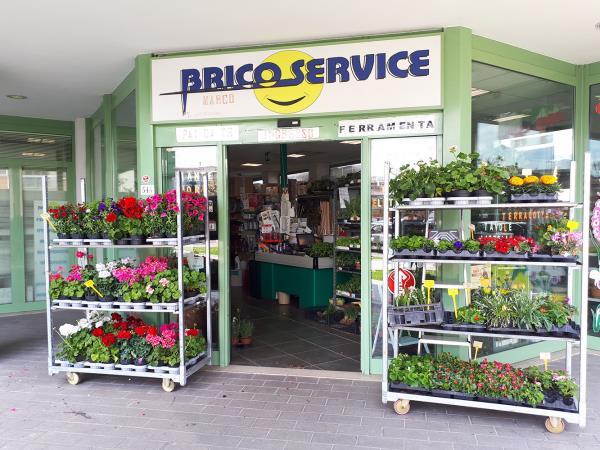 Vendita piante da orto