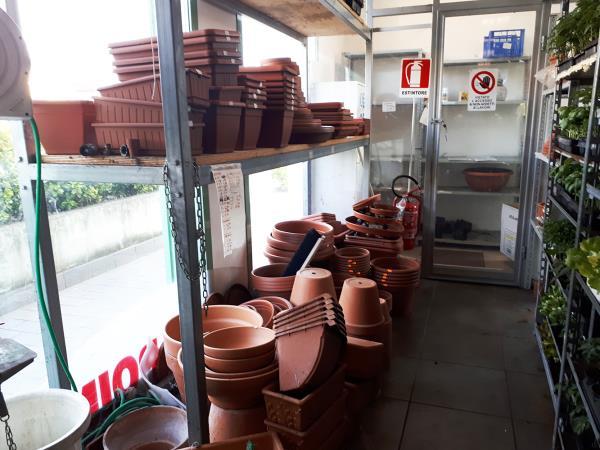 Vendita vasi per piante