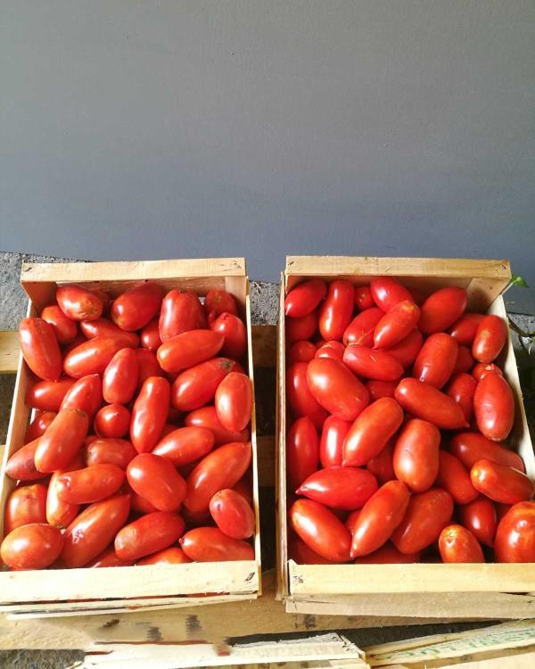 Azienda Agricola Simi Giorgio Vendita frutta e verdura