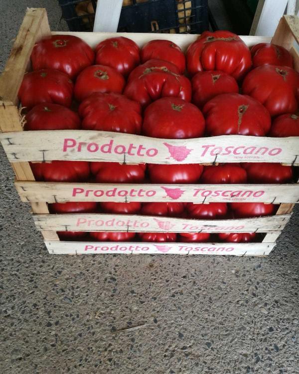 Vendita pomodori a km 0