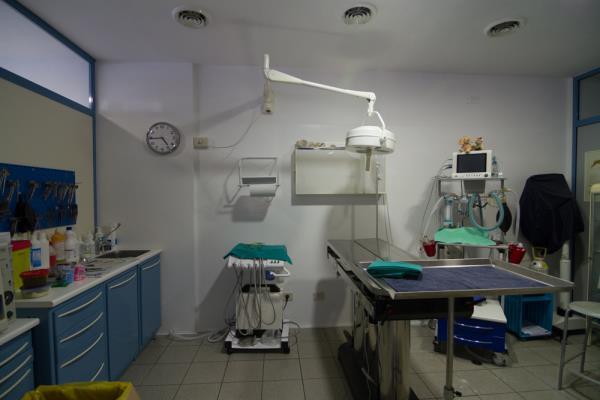 Laboratorio vterinario