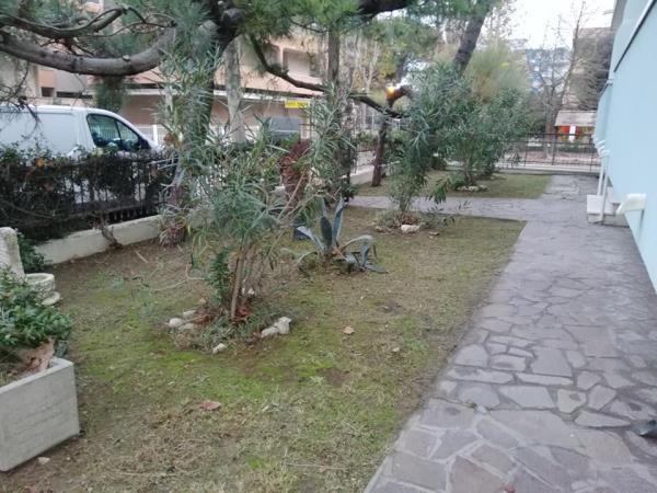 Pulizia siepi e zone verdi
