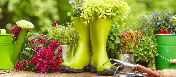 Accessori e utensili per la cura del giardino e dell