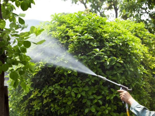 Vendita prodotti per la cura e la manutenzione del verde