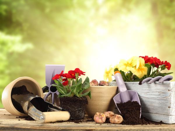 Vendita fertilizzanti e fitofarmaci