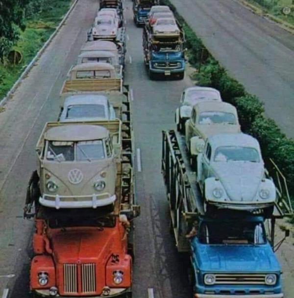 Trasporto auto Iamundo Trasporti Cittanova