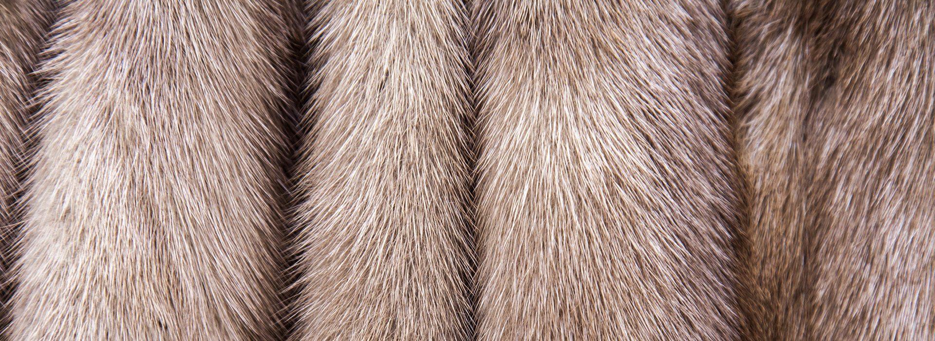 laboratorio interno per rimessa a modello pellicce