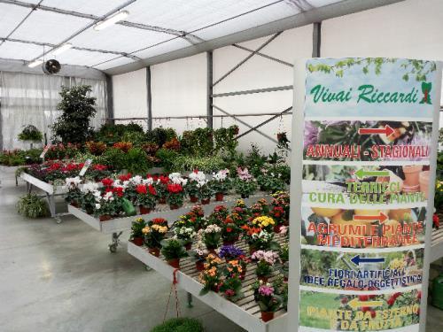vendita fiori finti e oggettistica vivaio brescia