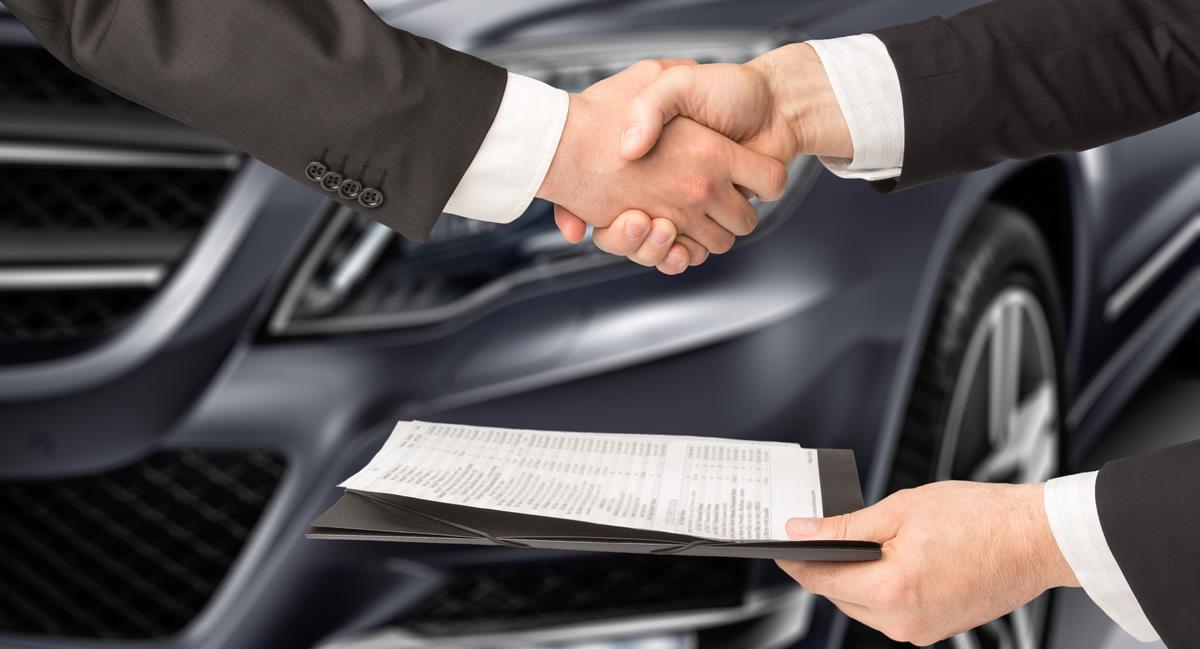 Assistenza pratiche assicurative|Car-Go Pomezia