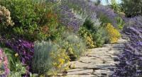 Servizi Giardinaggio Manutenzione Giardini Potatura Piante Imperia Savona Costa Azzurra | SERVICE RIVIERA