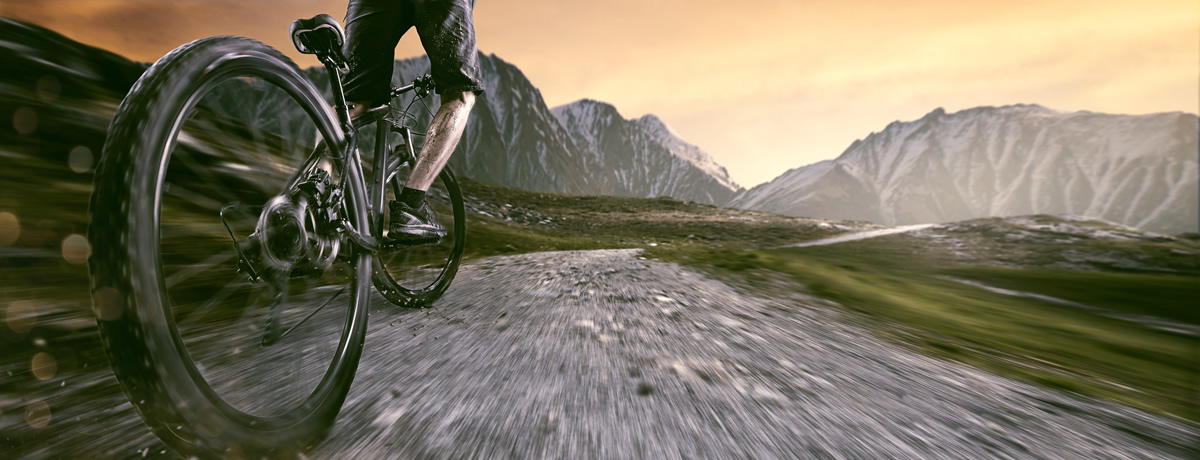 Accessori per la bici