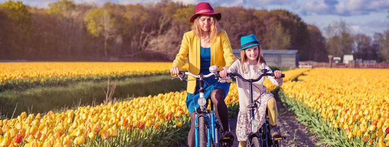biciclette roma prati
