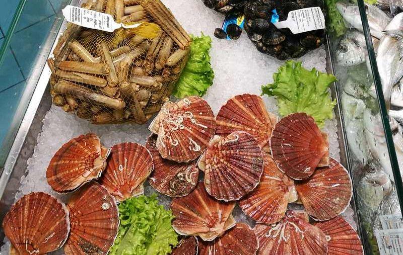 fornitore pesce ristoranti Trieste