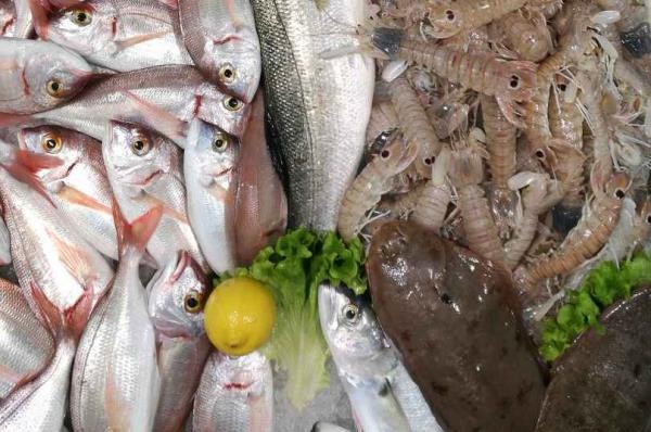 prodotti ittici Trieste