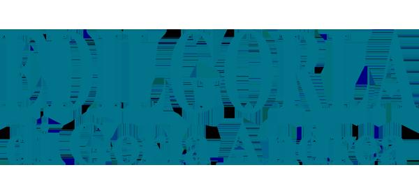 EDILGORLA DI GORLA ANDREA