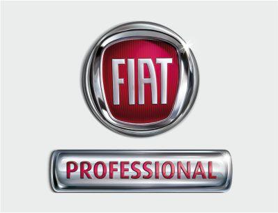 fiat professional autocat