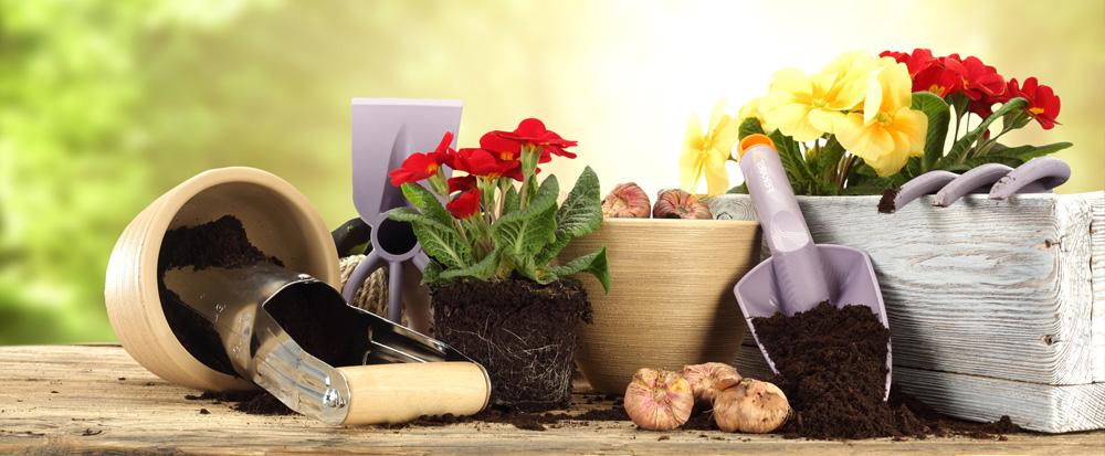 vendita oggetti giardinaggio