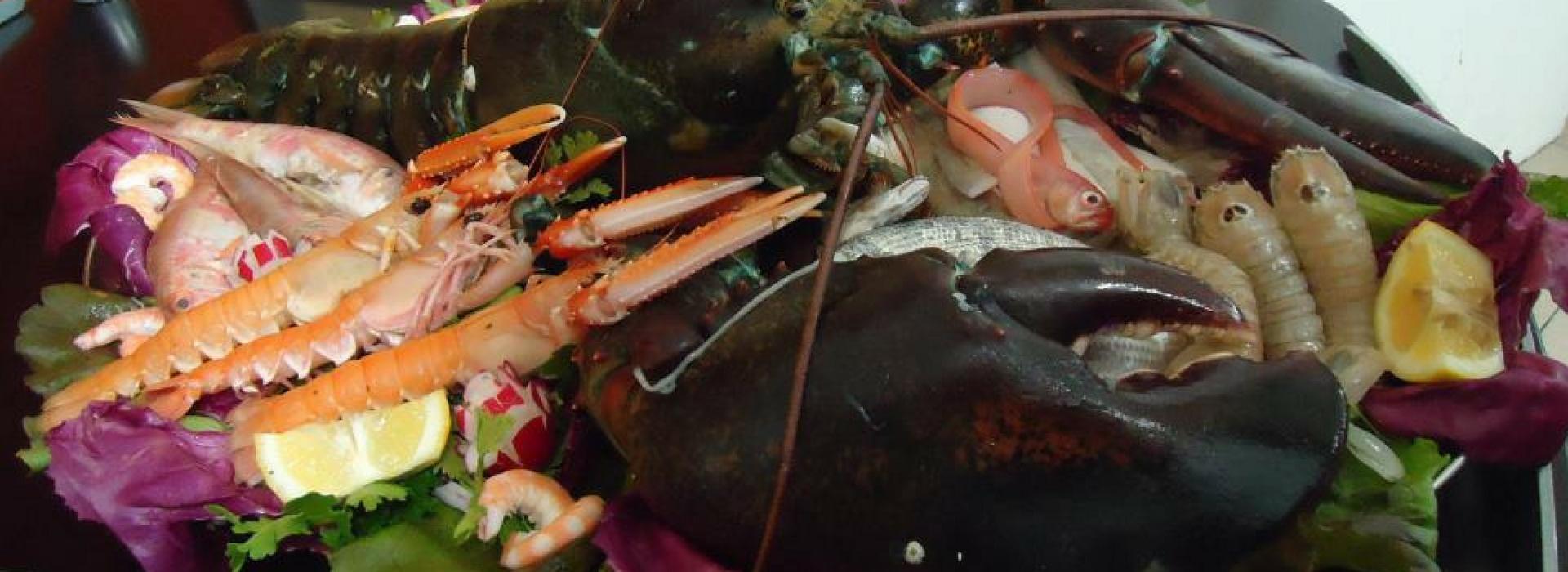 ristorante di pesce arezzo