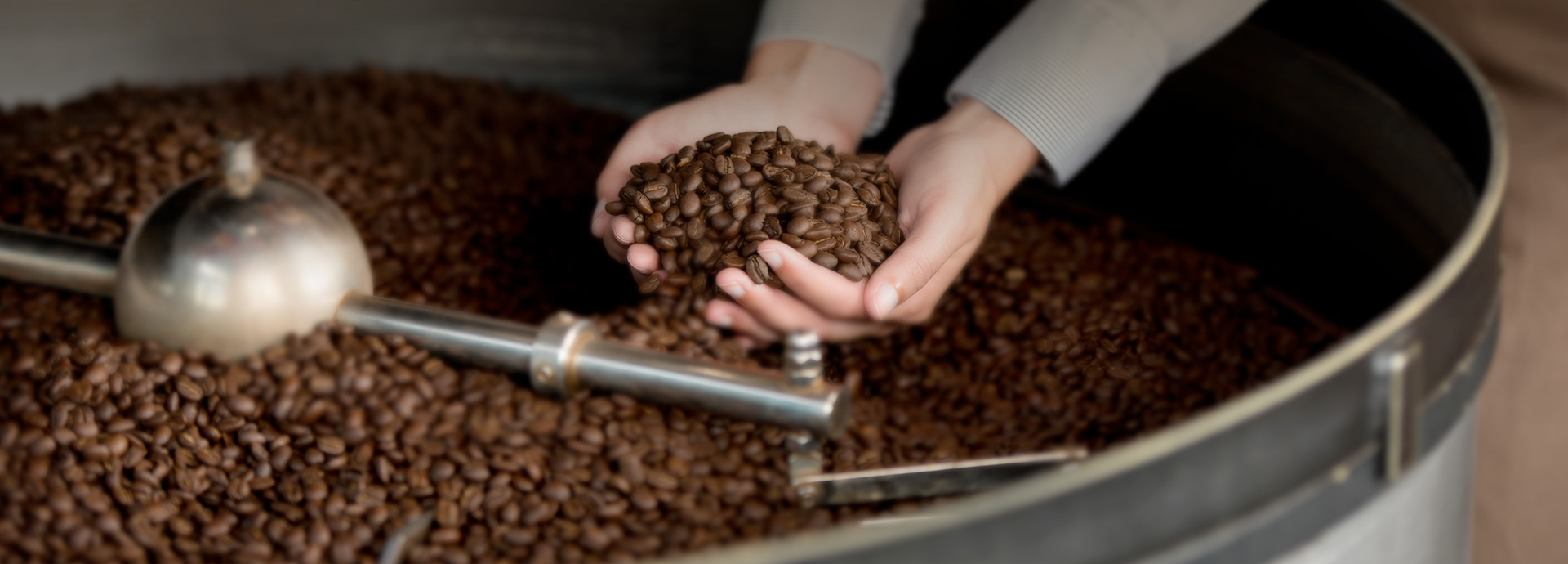 Caffè Sensi Cosenza