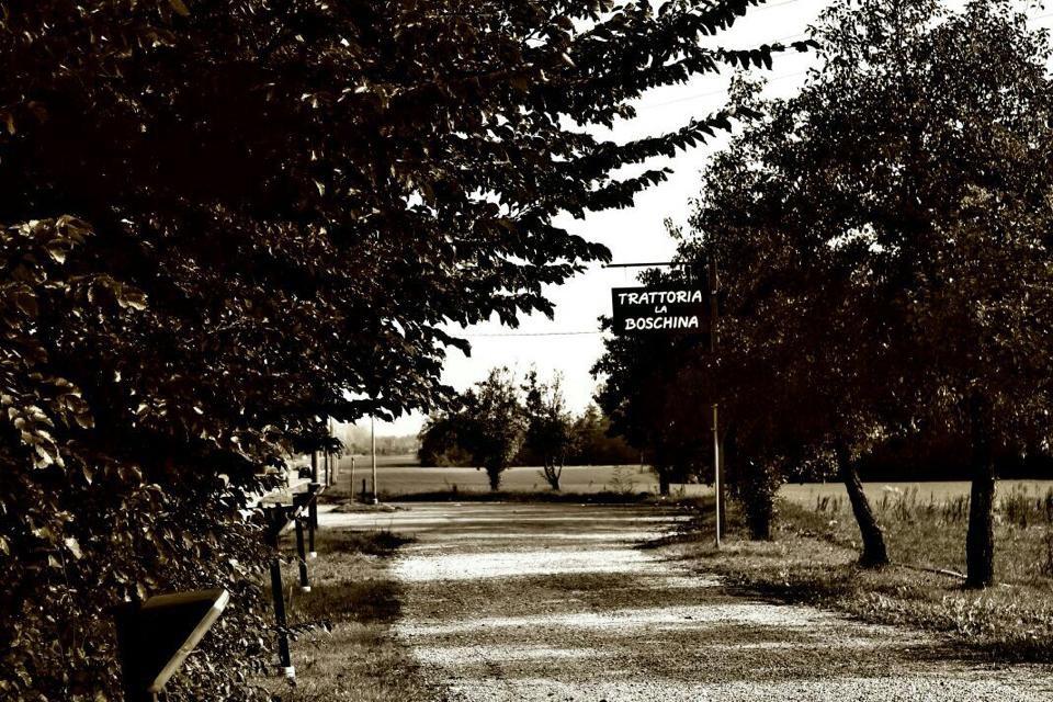 trattoria Fidenza Parma