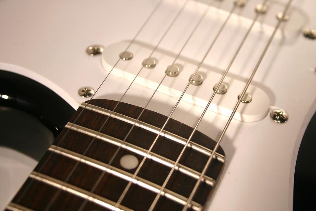 negozio di chitarre Macerata Live Music