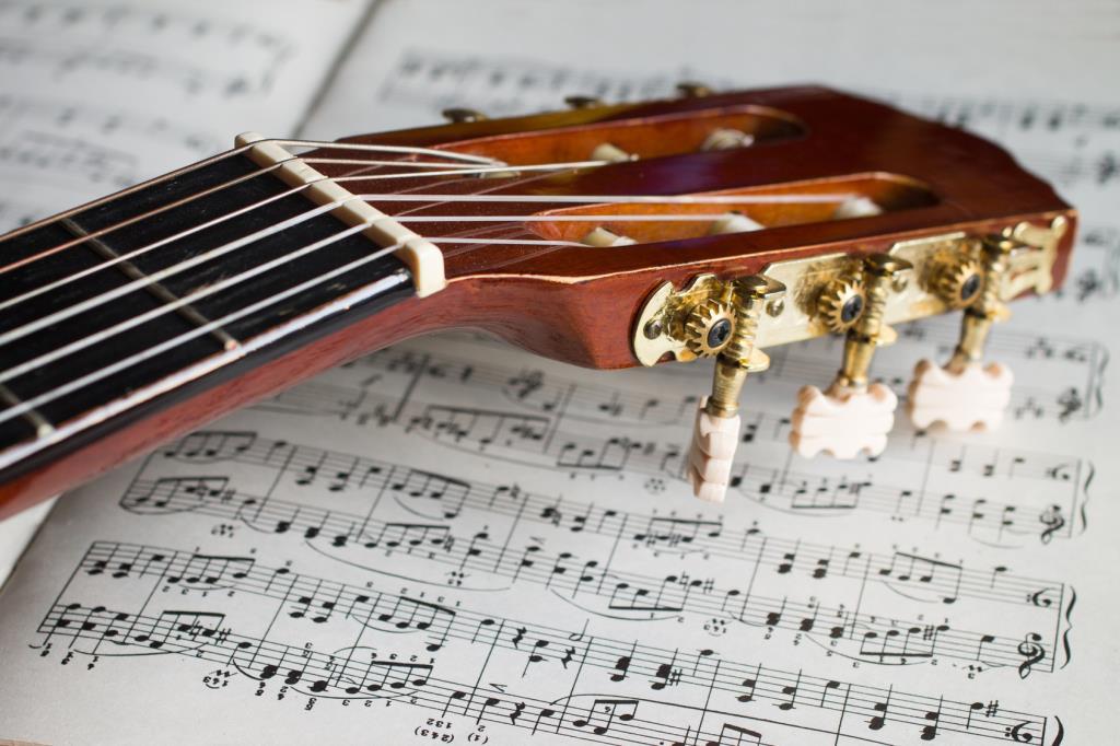 vendita chitarre Civitanova Marche