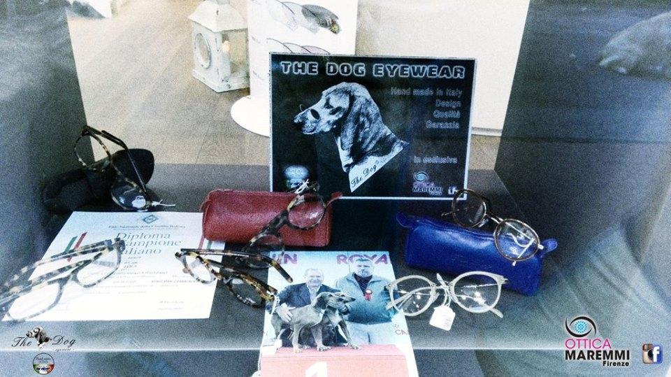 montature the dog eyewear