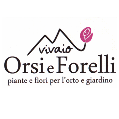www.vivaiorsiforelli.com