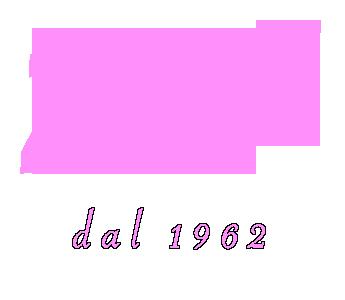 www.zanibomboniere.it