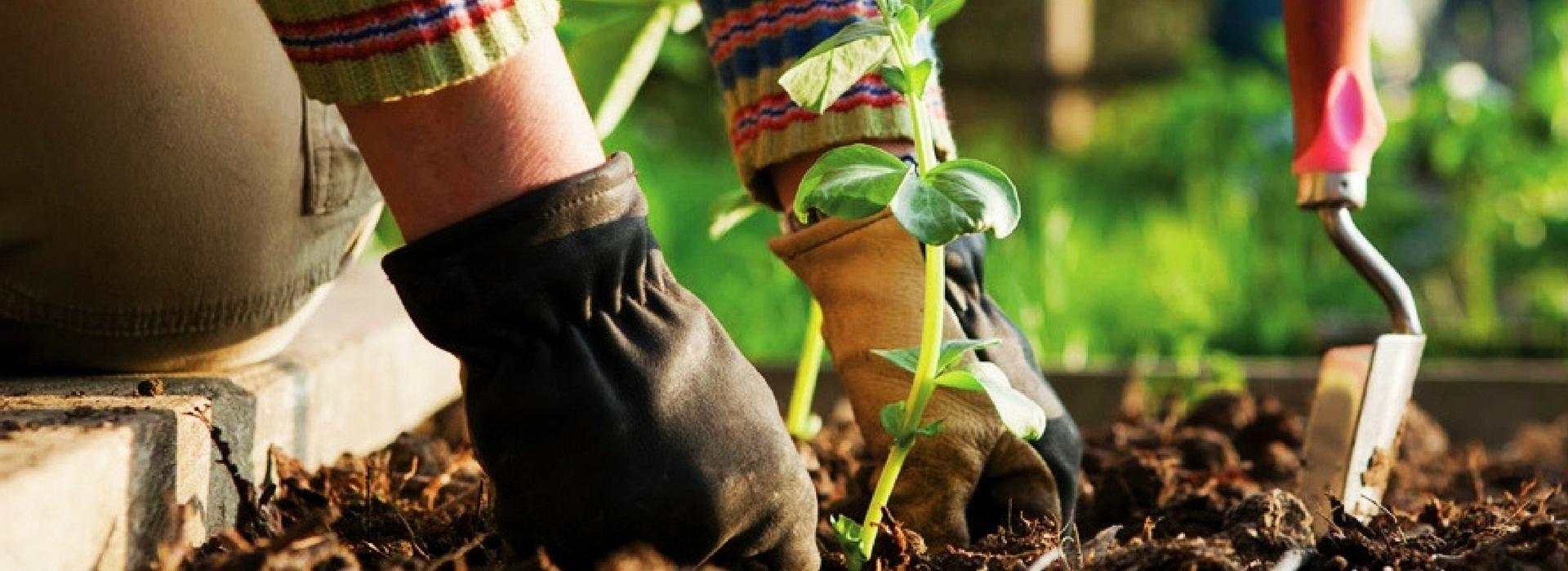prodotti per il giardinaggio Vittoria