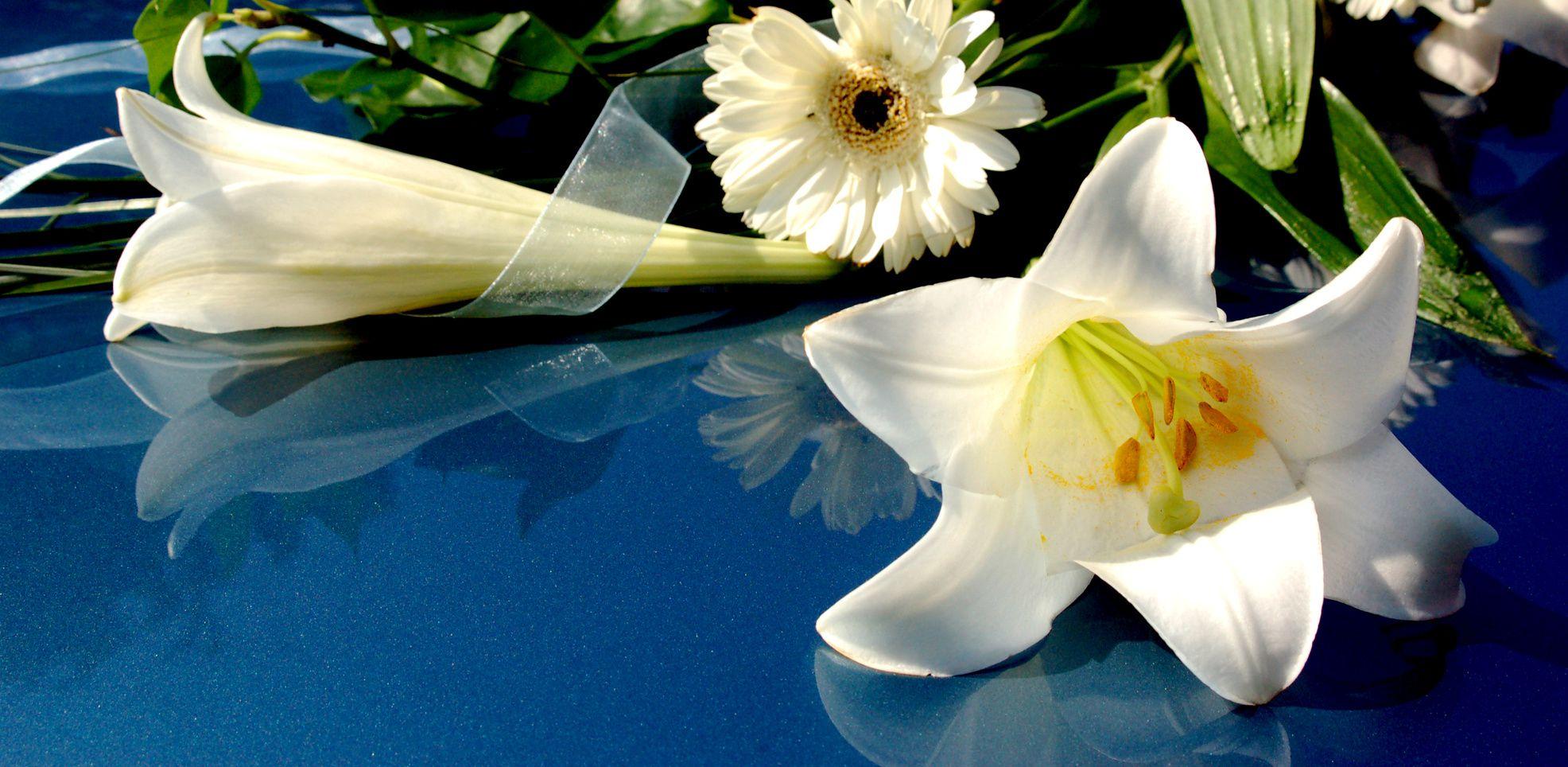 onoranze funebri santa maria a monte pisa
