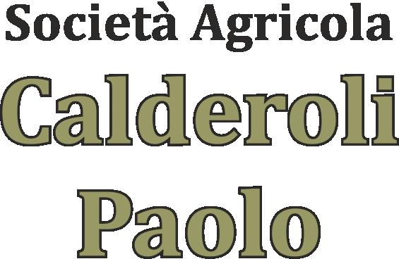 www.vivaicalderoli.com