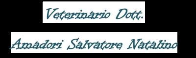 www.veterinarioamadoriolbia.it