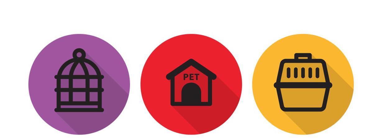promozione cibo cani terni