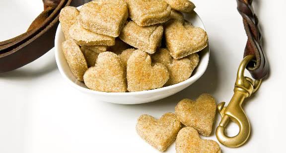 biscotti per cani terni